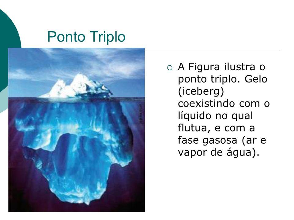 Ponto Triplo A Figura ilustra o ponto triplo. Gelo (iceberg) coexistindo com o líquido no qual flutua, e com a fase gasosa (ar e vapor de água).