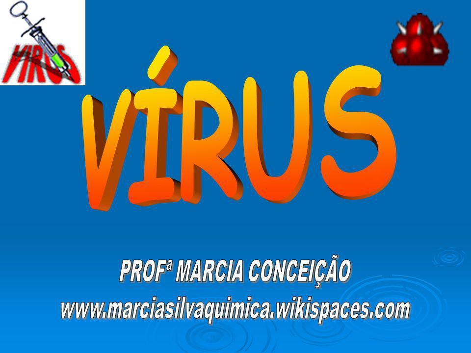 Os vírus não se inserem em nenhum reino porque não têm estrutura celular.