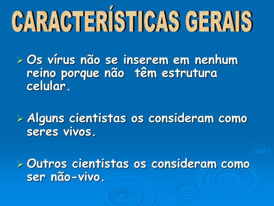 HEPATITE HEPATITE RAIVA RAIVA HERPES HERPES SARAMPO SARAMPO VARÍOLA VARÍOLA CATAPORA CATAPORA GRIPE GRIPE AIDS AIDS CAXUMBA CAXUMBA CONJUNTIVITE CONJUNTIVITE FARINJITE FARINJITE DENGUE DENGUE FEBRE AMARELA FEBRE AMARELA POLIOMIELITE POLIOMIELITE RUBÉOLA RUBÉOLA CONDILOMA CONDILOMA