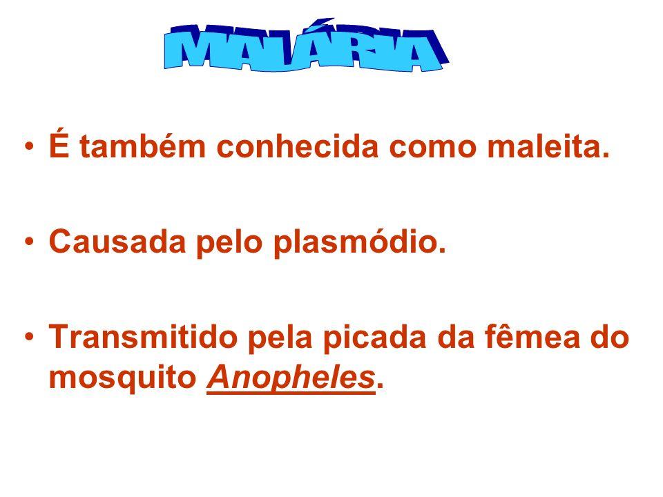 É também conhecida como maleita. Causada pelo plasmódio. Transmitido pela picada da fêmea do mosquito Anopheles.