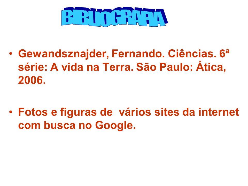 Gewandsznajder, Fernando. Ciências. 6ª série: A vida na Terra. São Paulo: Ática, 2006. Fotos e figuras de vários sites da internet com busca no Google