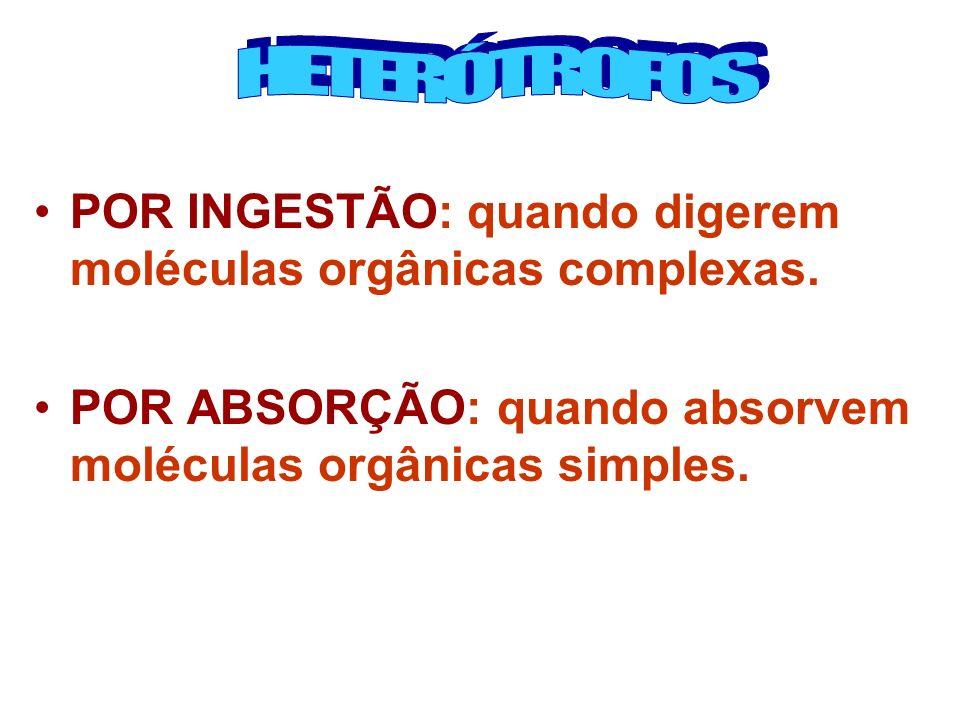 POR INGESTÃO: quando digerem moléculas orgânicas complexas. POR ABSORÇÃO: quando absorvem moléculas orgânicas simples.