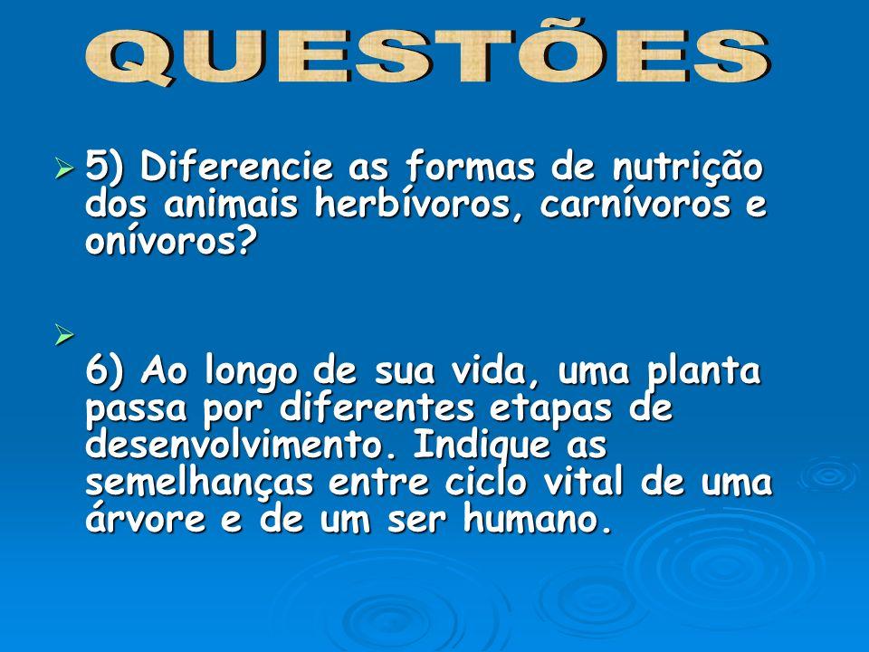 5) Diferencie as formas de nutrição dos animais herbívoros, carnívoros e onívoros? 5) Diferencie as formas de nutrição dos animais herbívoros, carnívo