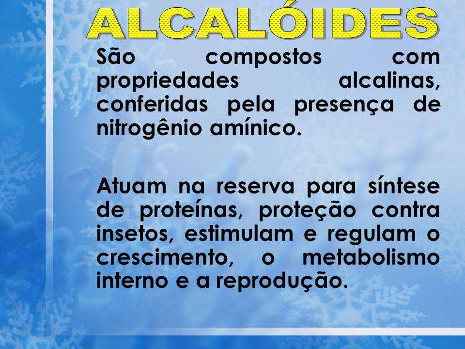São compostos com propriedades alcalinas, conferidas pela presença de nitrogênio amínico. Atuam na reserva para síntese de proteínas, proteção contra