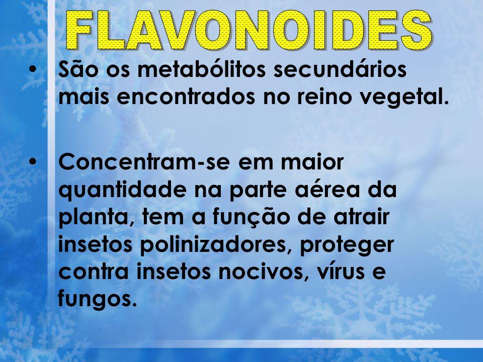 São os metabólitos secundários mais encontrados no reino vegetal. Concentram-se em maior quantidade na parte aérea da planta, tem a função de atrair i