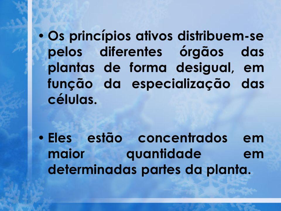 Os princípios ativos distribuem-se pelos diferentes órgãos das plantas de forma desigual, em função da especialização das células. Eles estão concentr