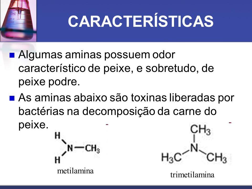 CARACTERÍSTICAS Algumas aminas possuem odor característico de peixe, e sobretudo, de peixe podre. As aminas abaixo são toxinas liberadas por bactérias