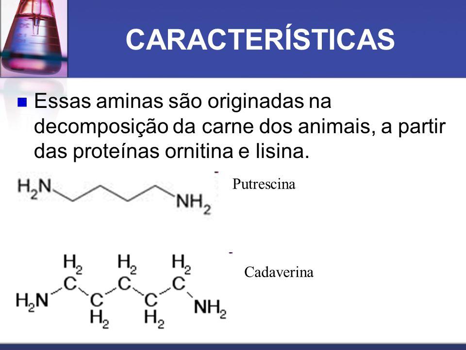 CARACTERÍSTICAS Essas aminas são originadas na decomposição da carne dos animais, a partir das proteínas ornitina e lisina. Putrescina Cadaverina