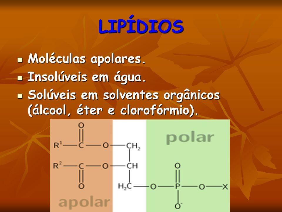 LIPÍDIOS Moléculas apolares. Moléculas apolares. Insolúveis em água. Insolúveis em água. Solúveis em solventes orgânicos (álcool, éter e clorofórmio).