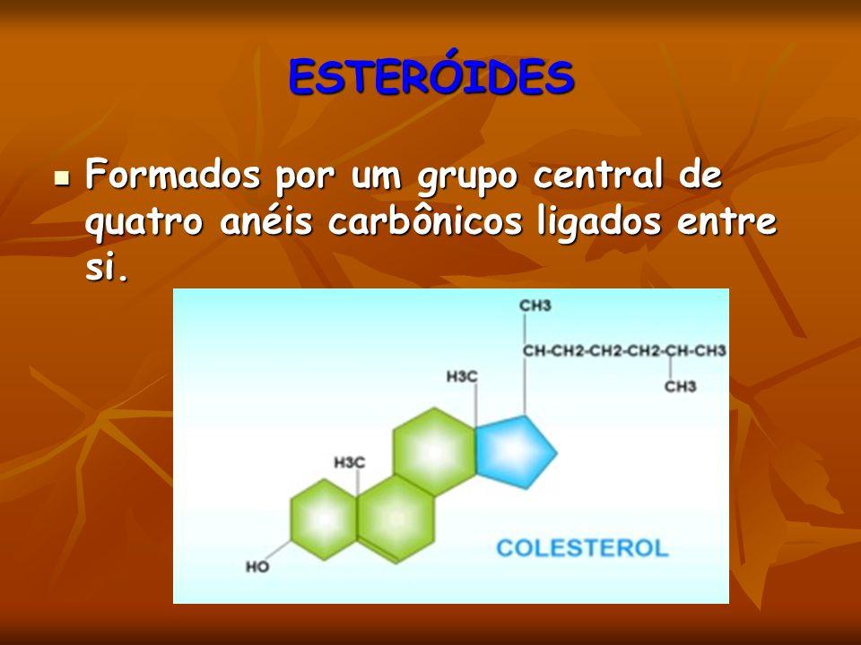 Formados por um grupo central de quatro anéis carbônicos ligados entre si. Formados por um grupo central de quatro anéis carbônicos ligados entre si.