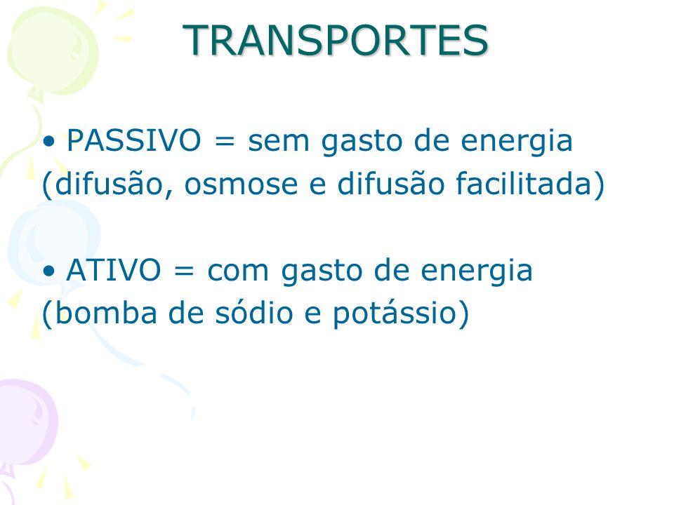 TRANSPORTES PASSIVO = sem gasto de energia (difusão, osmose e difusão facilitada) ATIVO = com gasto de energia (bomba de sódio e potássio)