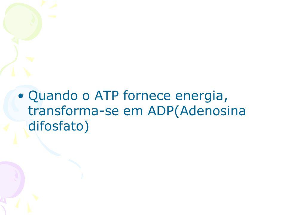 Quando o ATP fornece energia, transforma-se em ADP(Adenosina difosfato)