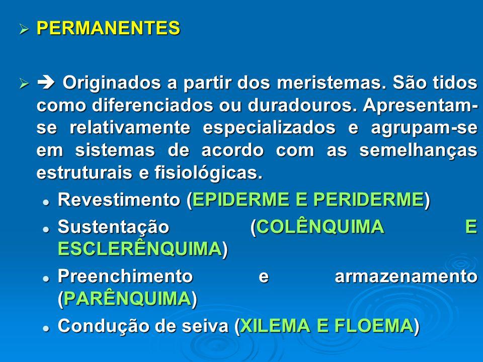 PERMANENTES PERMANENTES Originados a partir dos meristemas. São tidos como diferenciados ou duradouros. Apresentam- se relativamente especializados e
