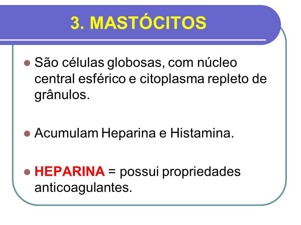3. MASTÓCITOS São células globosas, com núcleo central esférico e citoplasma repleto de grânulos. Acumulam Heparina e Histamina. HEPARINA = possui pro