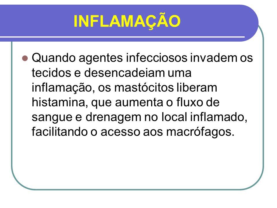 INFLAMAÇÃO Quando agentes infecciosos invadem os tecidos e desencadeiam uma inflamação, os mastócitos liberam histamina, que aumenta o fluxo de sangue