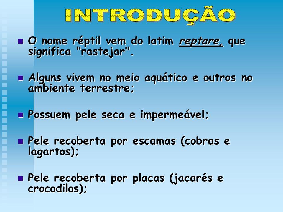 O nome réptil vem do latim reptare, que significa