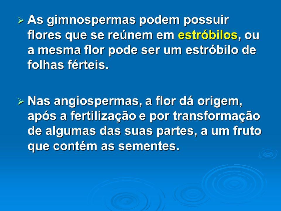 As gimnospermas podem possuir flores que se reúnem em estróbilos, ou a mesma flor pode ser um estróbilo de folhas férteis. As gimnospermas podem possu