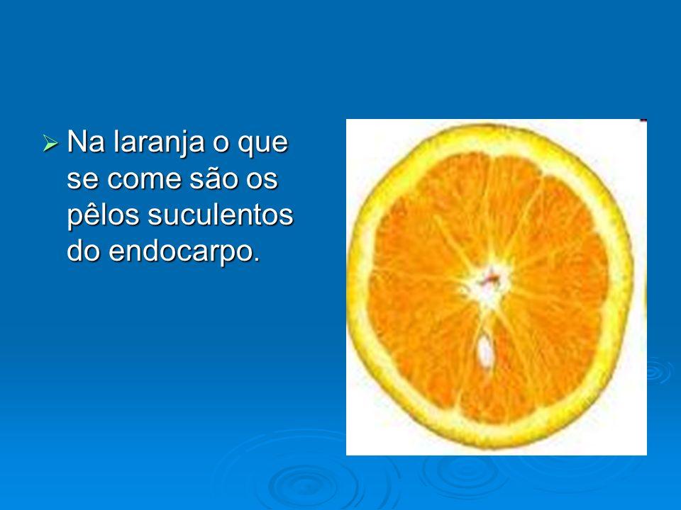 Na laranja o que se come são os pêlos suculentos do endocarpo. Na laranja o que se come são os pêlos suculentos do endocarpo.