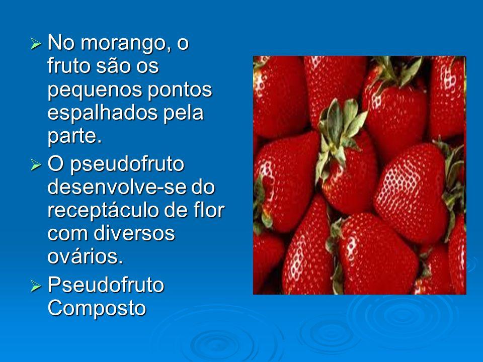 No morango, o fruto são os pequenos pontos espalhados pela parte. No morango, o fruto são os pequenos pontos espalhados pela parte. O pseudofruto dese