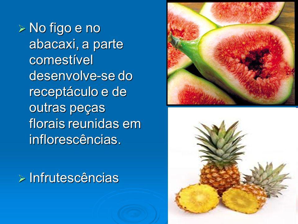 No figo e no abacaxi, a parte comestível desenvolve-se do receptáculo e de outras peças florais reunidas em inflorescências. No figo e no abacaxi, a p