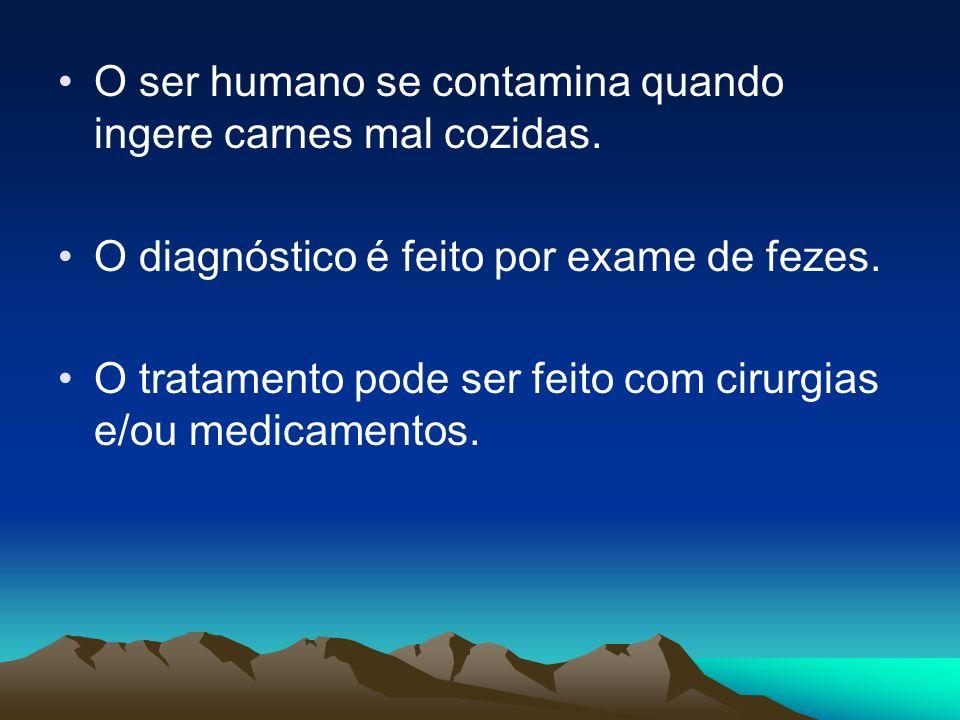 O ser humano se contamina quando ingere carnes mal cozidas. O diagnóstico é feito por exame de fezes. O tratamento pode ser feito com cirurgias e/ou m