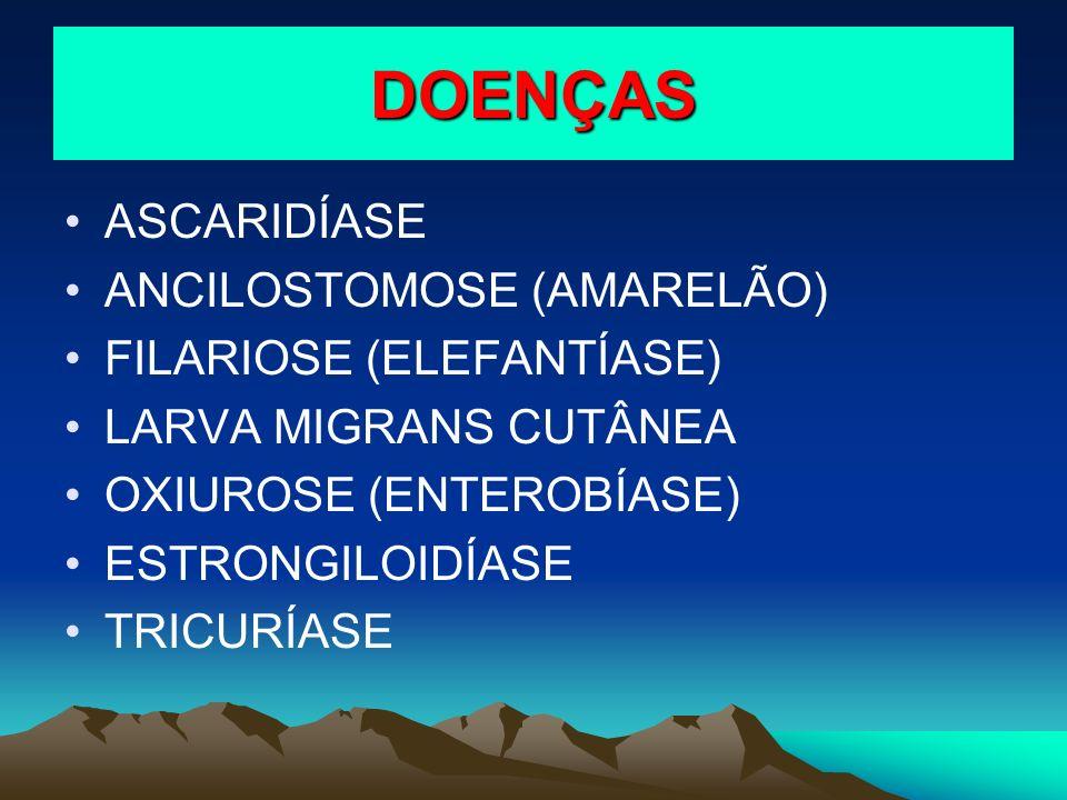 DOENÇAS ASCARIDÍASE ANCILOSTOMOSE (AMARELÃO) FILARIOSE (ELEFANTÍASE) LARVA MIGRANS CUTÂNEA OXIUROSE (ENTEROBÍASE) ESTRONGILOIDÍASE TRICURÍASE