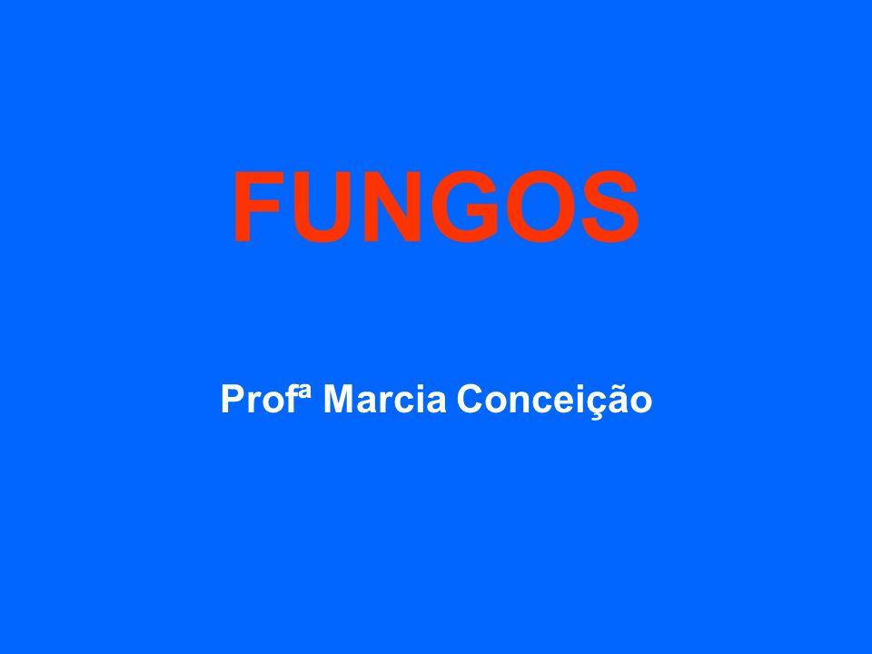 FUNGOS Profª Marcia Conceição