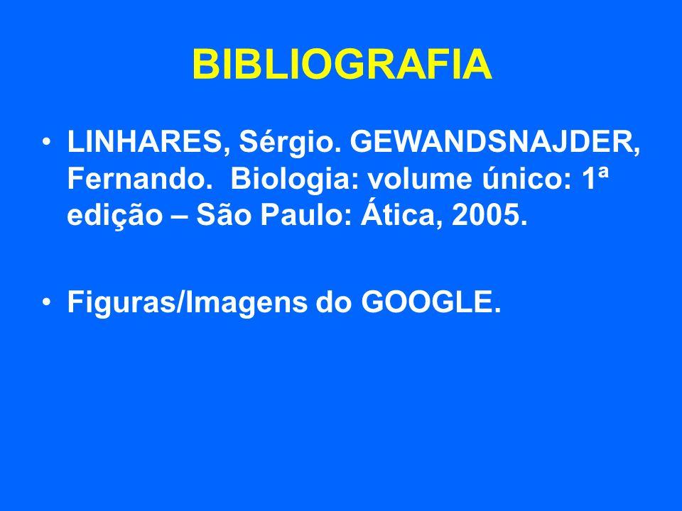 BIBLIOGRAFIA LINHARES, Sérgio. GEWANDSNAJDER, Fernando. Biologia: volume único: 1ª edição – São Paulo: Ática, 2005. Figuras/Imagens do GOOGLE.