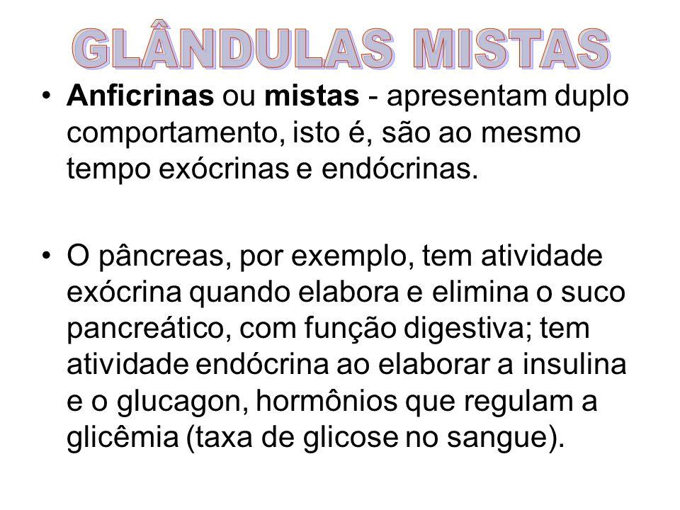 Anficrinas ou mistas - apresentam duplo comportamento, isto é, são ao mesmo tempo exócrinas e endócrinas. O pâncreas, por exemplo, tem atividade exócr
