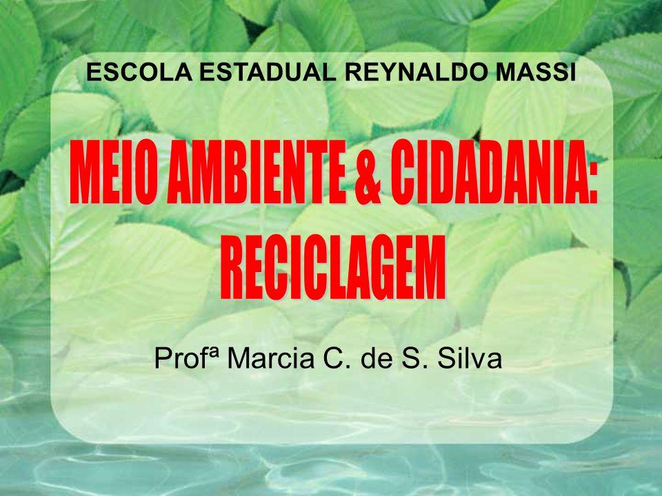 Profª Marcia C. de S. Silva ESCOLA ESTADUAL REYNALDO MASSI