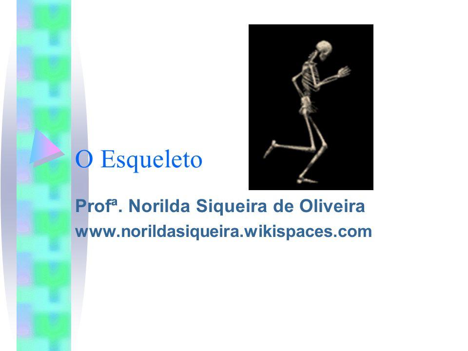 O Esqueleto Profª. Norilda Siqueira de Oliveira www.norildasiqueira.wikispaces.com