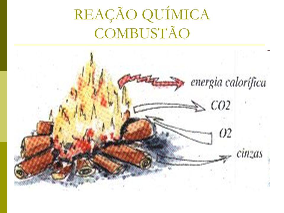 REAÇÃO QUÍMICA COMBUSTÃO