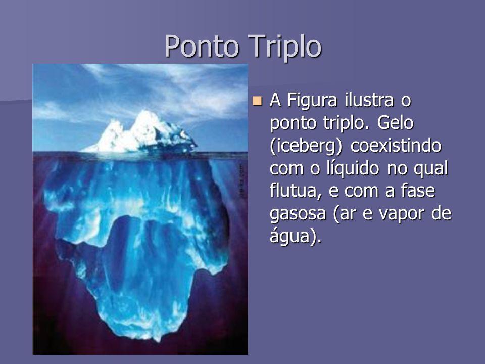 Ponto Triplo A Figura ilustra o ponto triplo. Gelo (iceberg) coexistindo com o líquido no qual flutua, e com a fase gasosa (ar e vapor de água). A Fig