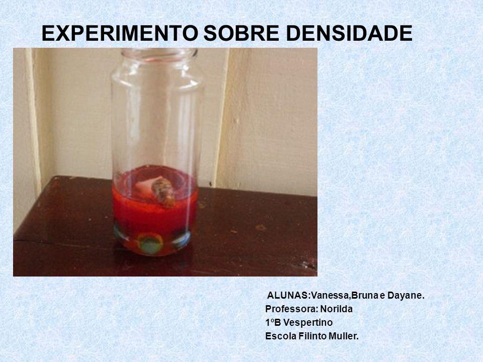 EXPERIMENTO SOBRE DENSIDADE ALUNAS:Vanessa,Bruna e Dayane. Professora: Norilda 1ºB Vespertino Escola Filinto Muller.