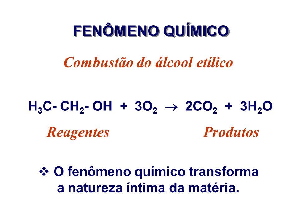 ATOMICIDADE AtomicidadeSubstâncias MonoatômicaHe, Ne, Ar, Kr DiatômicaH 2, N 2, HCl, CO TetratômicaP 4 (fósforo branco) IndeterminadaP (verm), C (graf