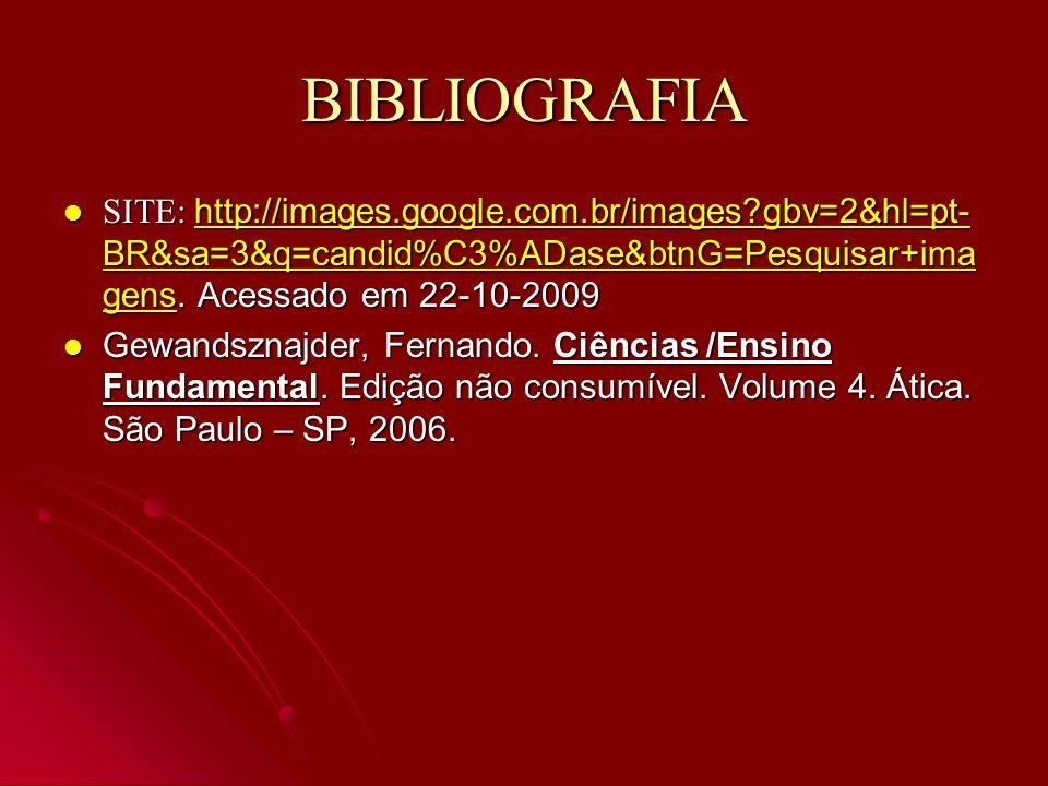 BIBLIOGRAFIA SITE: http://images.google.com.br/images?gbv=2&hl=pt- BR&sa=3&q=candid%C3%ADase&btnG=Pesquisar+ima gens. Acessado em 22-10-2009 SITE: htt