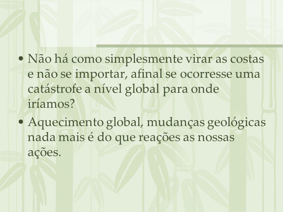VÍDEO Aquecimento global Brasil A CARTA DE 2070