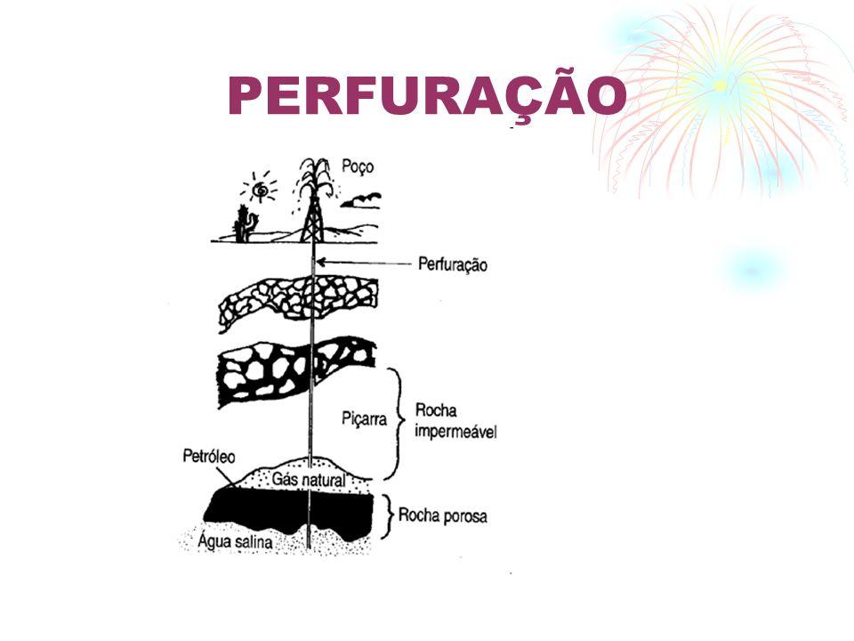 APLICAÇÕES DO PETRÓLEO Fonte de Combustível.