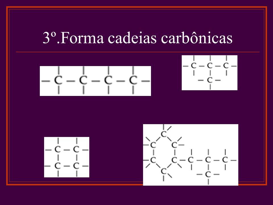 3º.Forma cadeias carbônicas
