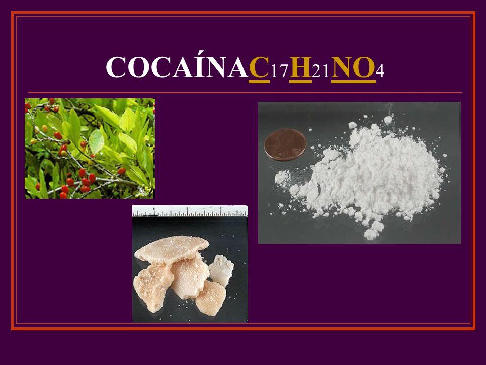 COCAÍNAC 17 H 21 NO 4C H NO