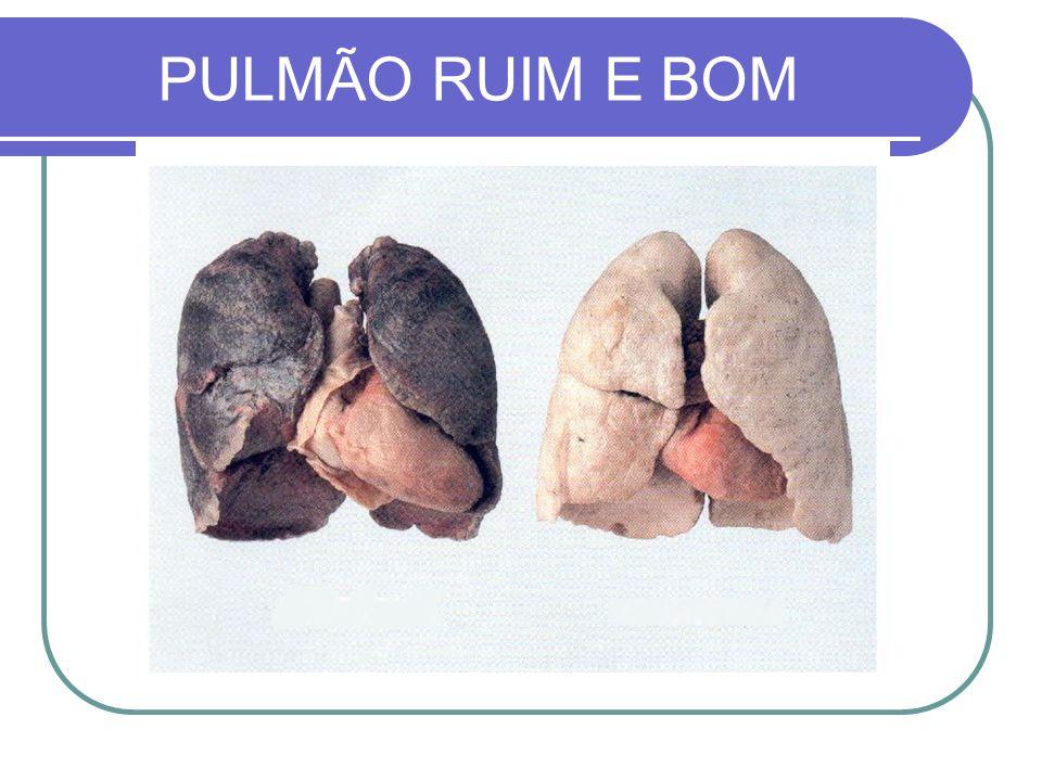 PULMÃO RUIM E BOM