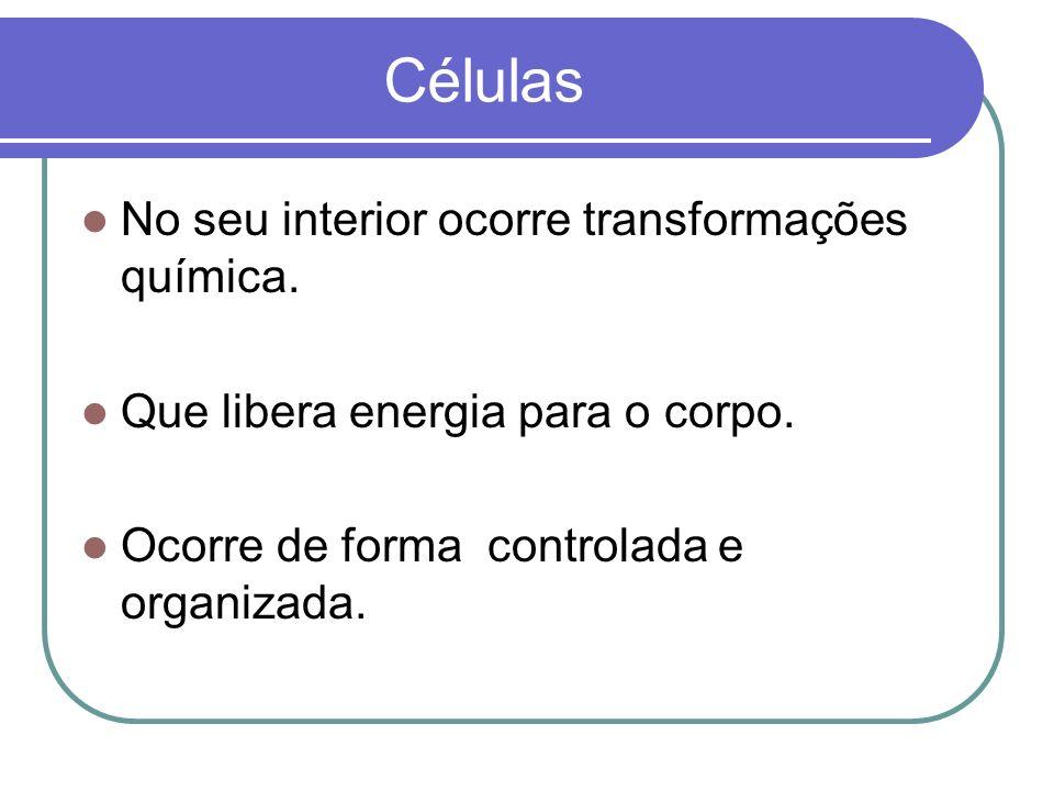 Células No seu interior ocorre transformações química. Que libera energia para o corpo. Ocorre de forma controlada e organizada.