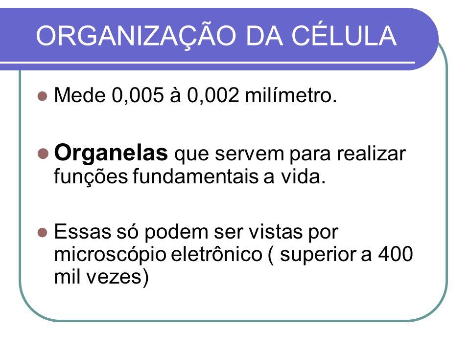 ORGANIZAÇÃO DA CÉLULA Mede 0,005 à 0,002 milímetro. Organelas que servem para realizar funções fundamentais a vida. Essas só podem ser vistas por micr