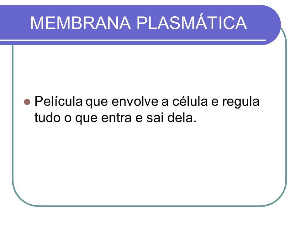 MEMBRANA PLASMÁTICA Película que envolve a célula e regula tudo o que entra e sai dela.