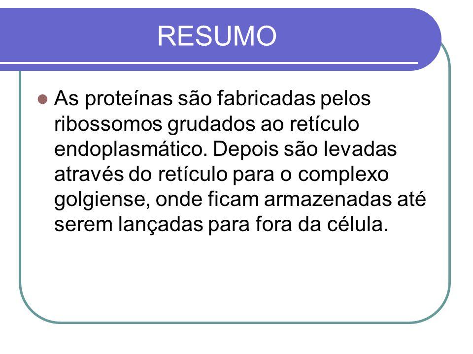 RESUMO As proteínas são fabricadas pelos ribossomos grudados ao retículo endoplasmático. Depois são levadas através do retículo para o complexo golgie