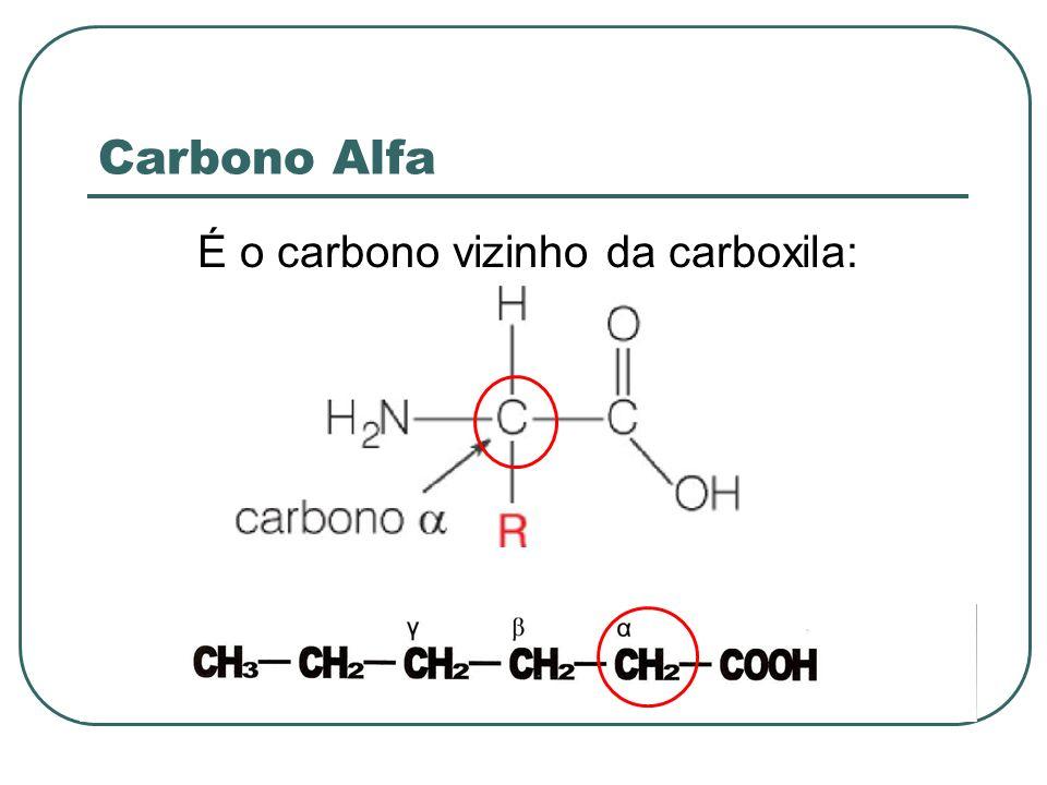 Carbono Alfa É o carbono vizinho da carboxila: