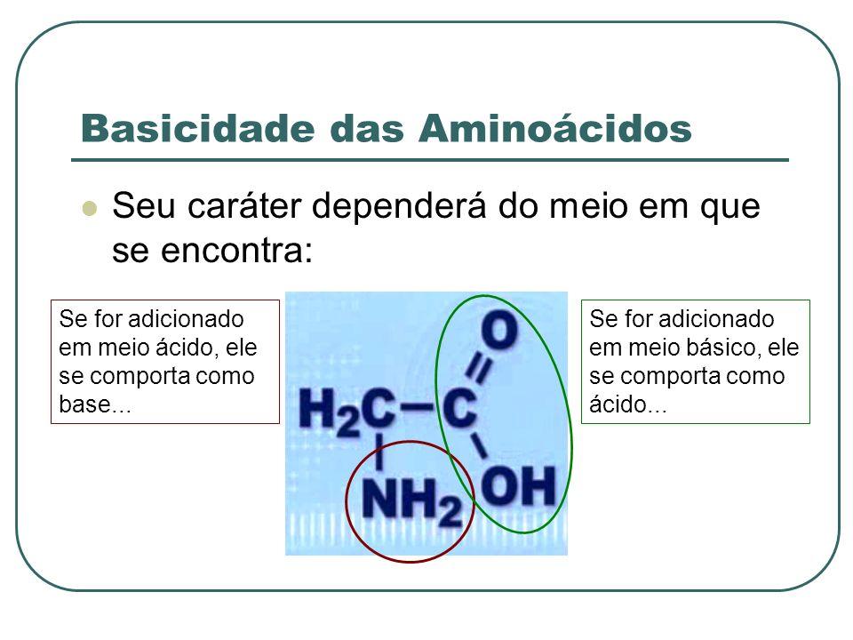 Basicidade das Aminoácidos Seu caráter dependerá do meio em que se encontra: Se for adicionado em meio ácido, ele se comporta como base... Se for adic
