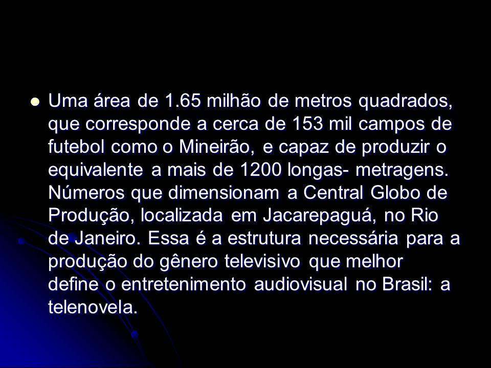 Uma área de 1.65 milhão de metros quadrados, que corresponde a cerca de 153 mil campos de futebol como o Mineirão, e capaz de produzir o equivalente a