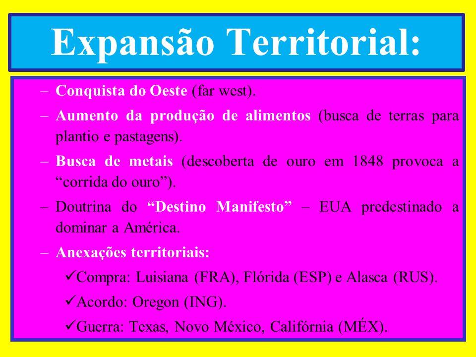 Expansão Territorial: –Conquista do Oeste (far west). –Aumento da produção de alimentos (busca de terras para plantio e pastagens). –Busca de metais (