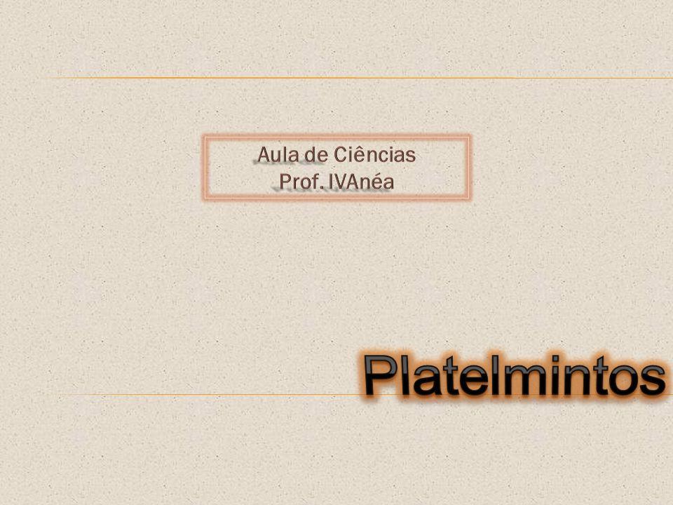 Platelmintos (do grego platys: chato e helmins: verme) Habitam ambientes marinhos ou de água doce.